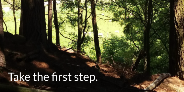 Take the first step.